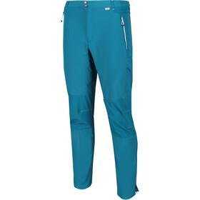 Regatta Sungari II Pantalones Hombre, olympic/gulfstream